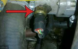 Где находится датчик температуры двигателя ниссан блюберд
