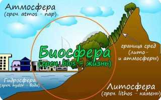 Что дает возможность рассматривать биосферу как вечный двигатель